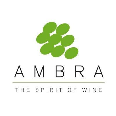 AMBRA zwiększa zysk i dywidendę