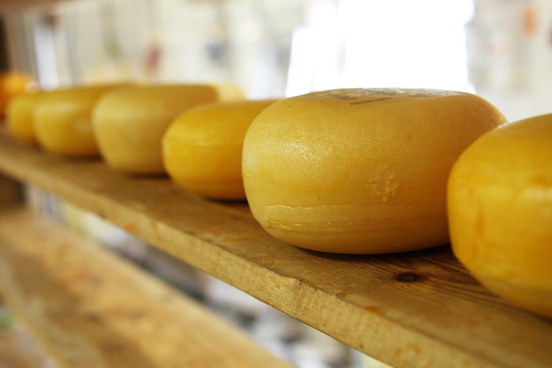 Unijny eksport serów