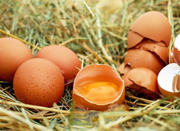 Producenci żywności wycofują jaja z chowu klatkowego
