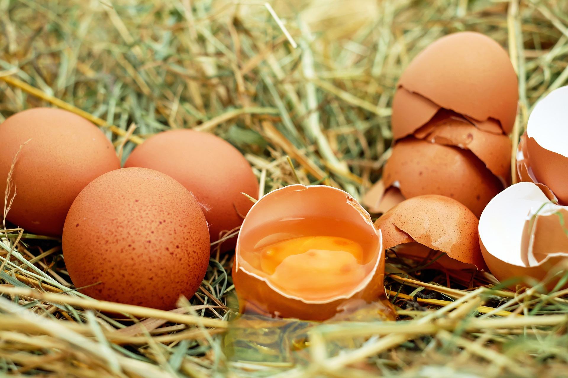 Cena jaj rośnie