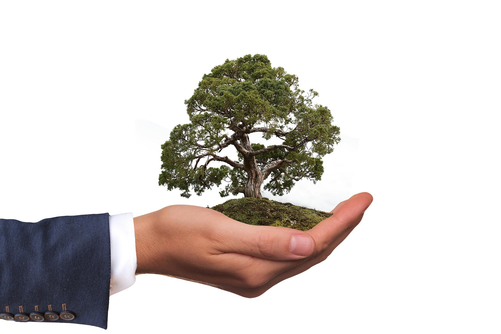Firmy otwarte na ekologię