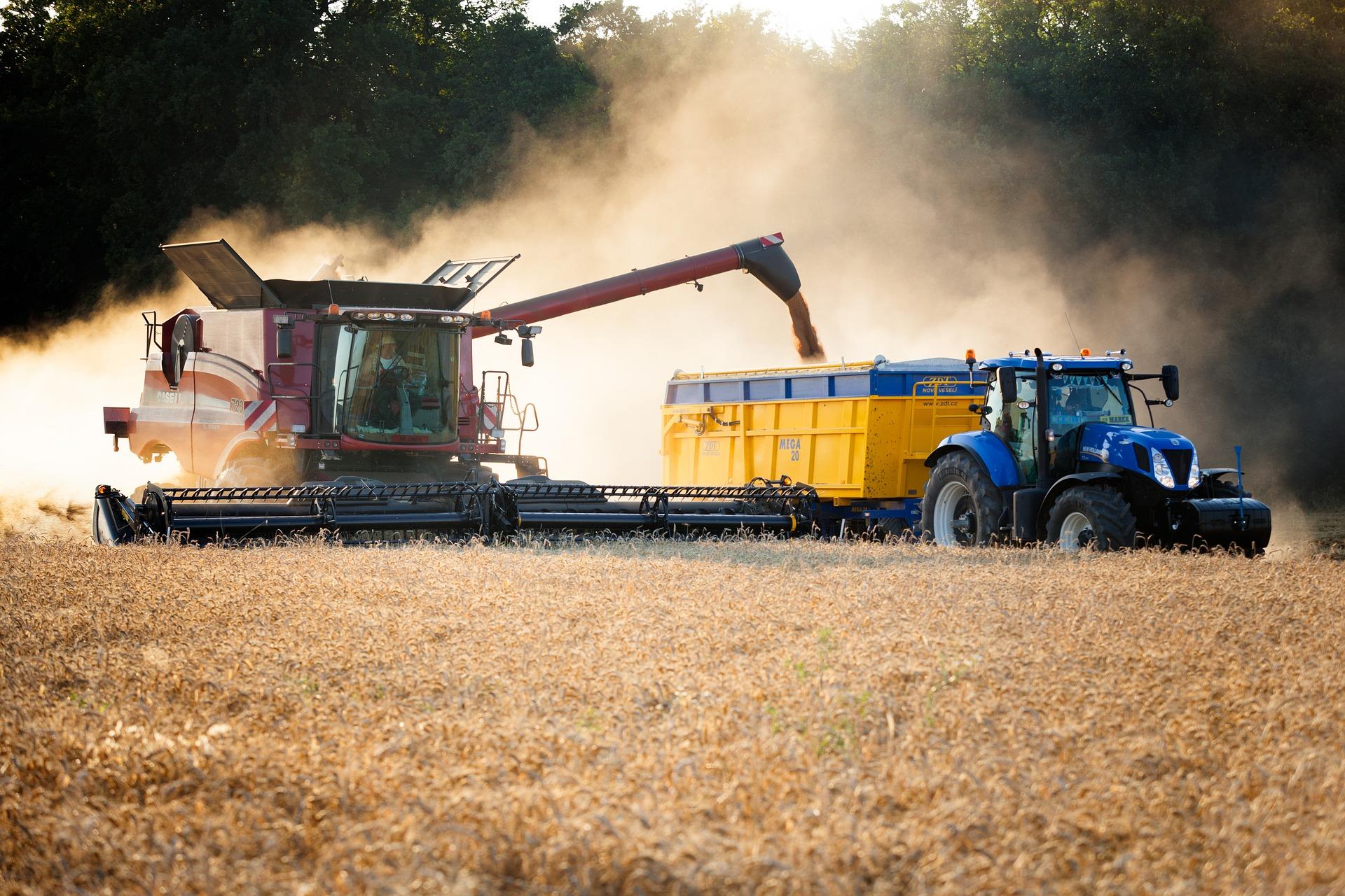 Szacunkowa produkcja ziemiopłodów rolnych i ogrodniczych w 2020 r.