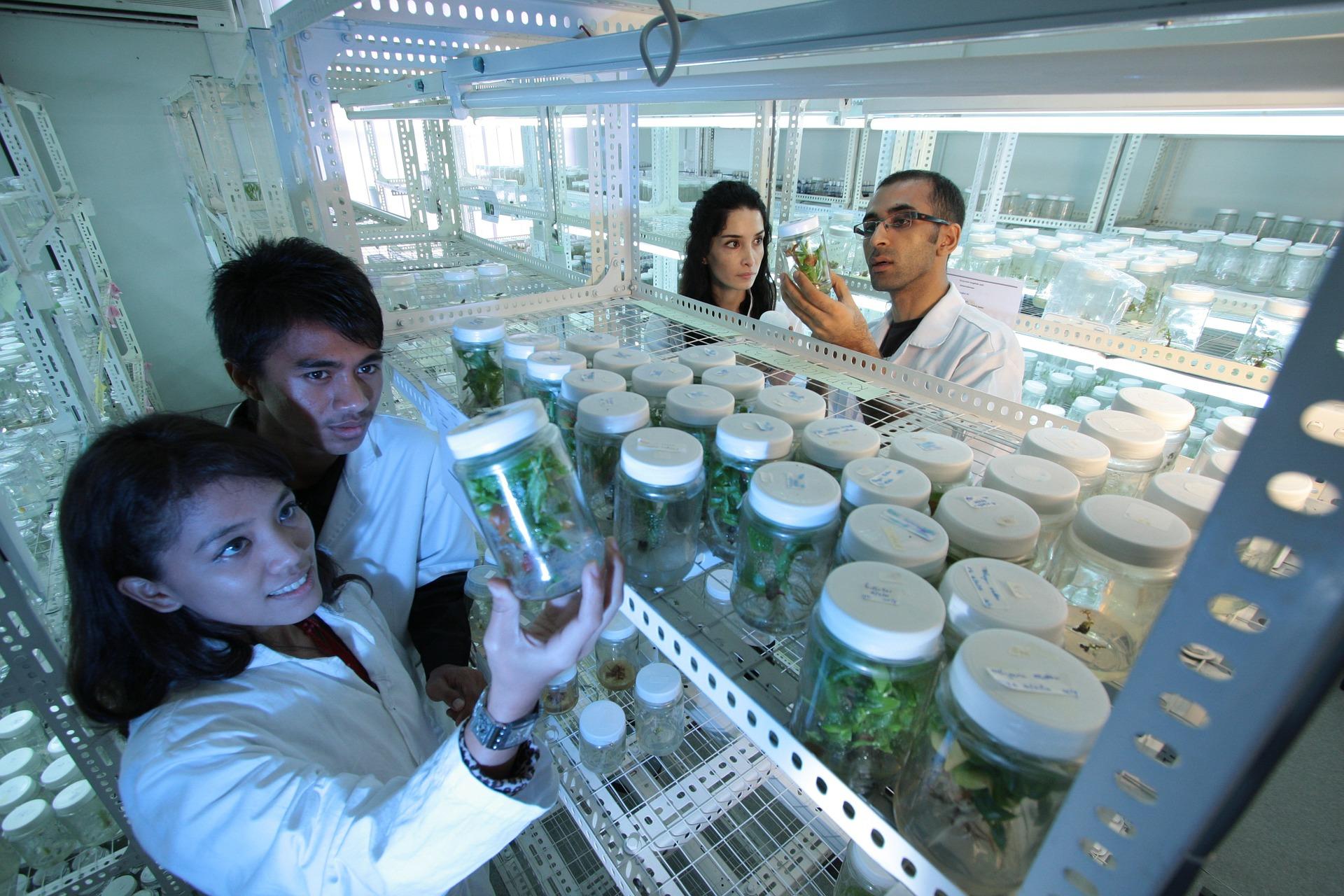 Eksport do Indonezji – zatwierdzanie laboratoriów
