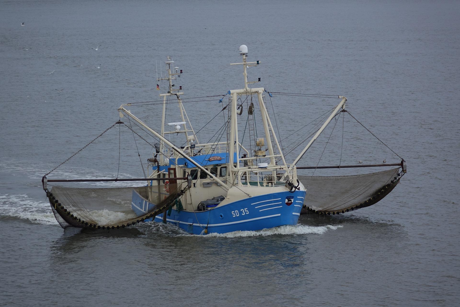 Polska domaga się zmiany w polityce rybołówstwa UE
