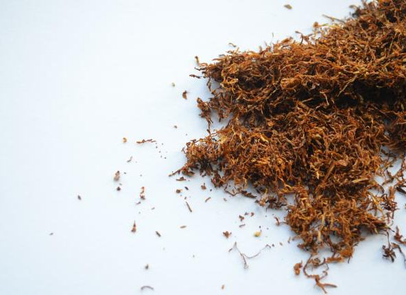 Co zamiast papierosów mentolowych?