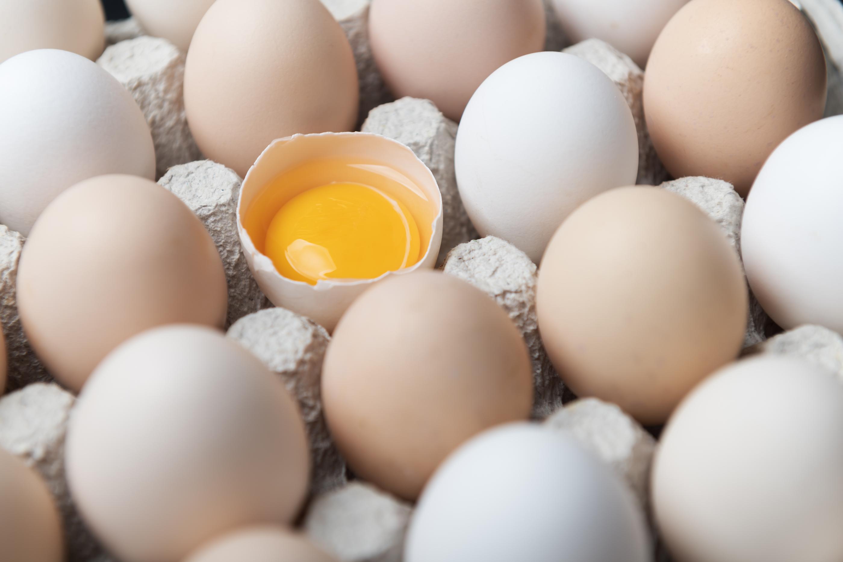 Wznowienie eksportu drobiu i jaj do Hongkongu