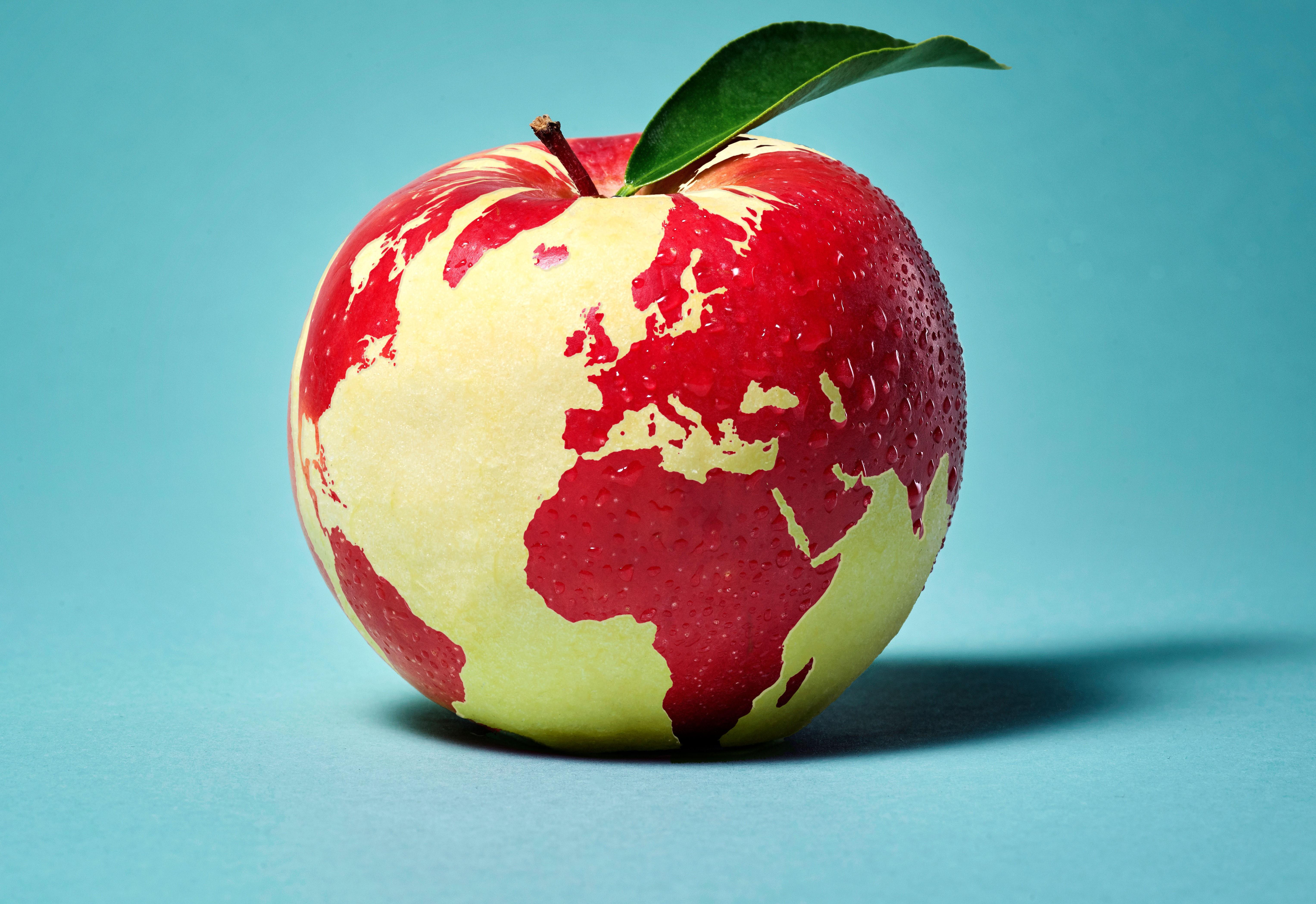 Kaufland publikuje raport zrównoważonego rozwoju