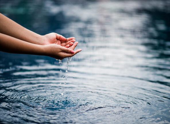 Nestlé Waters planuje regenerację lokalnych obiegów wody