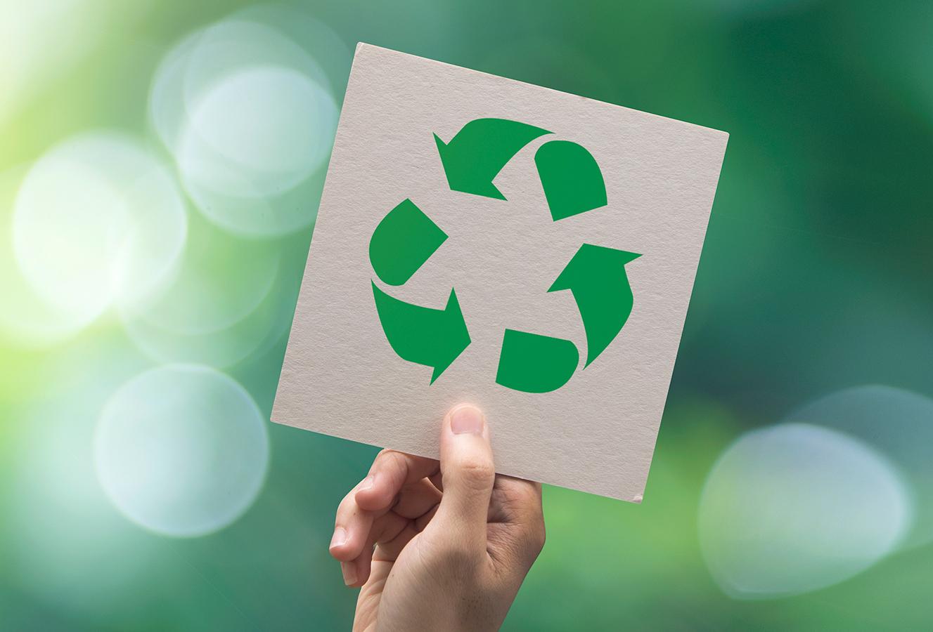 Lidl Polska angażuje się w ochronę środowiska